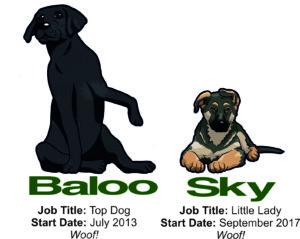 Baloo and Sky
